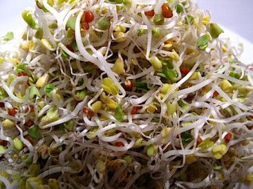 sprouts bulk food instructions