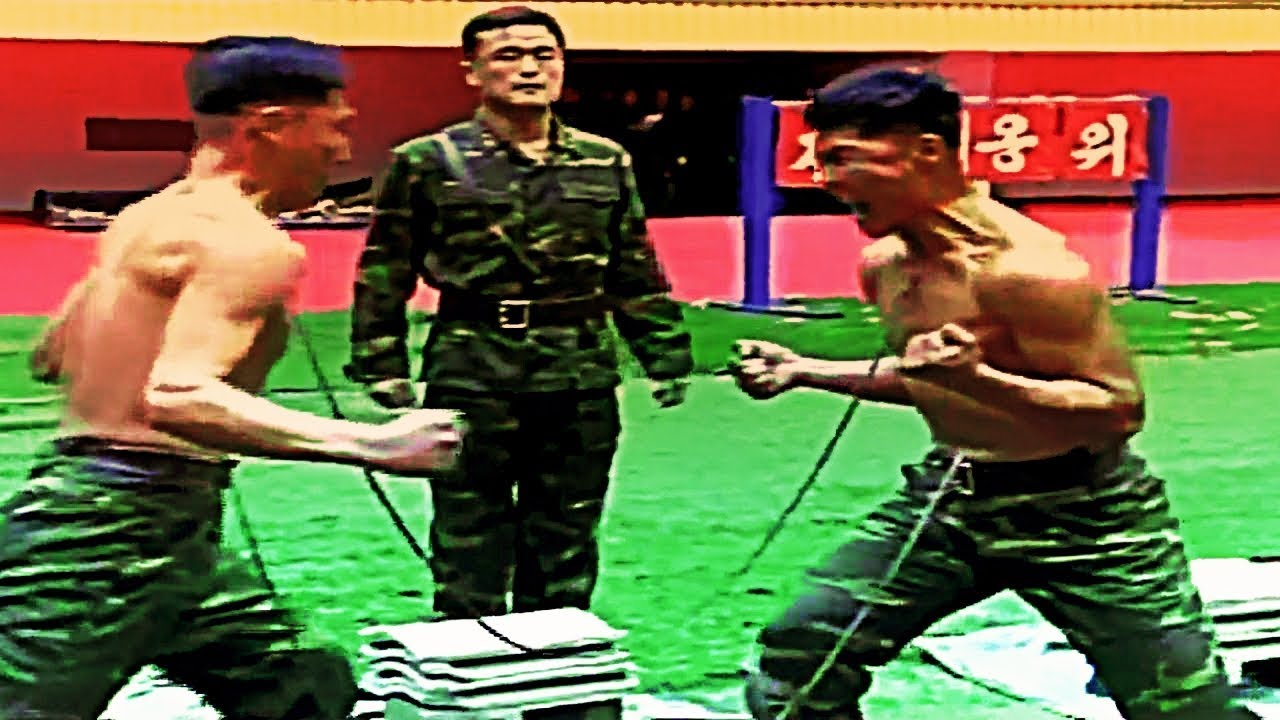 best hand to hand combat instructional videos