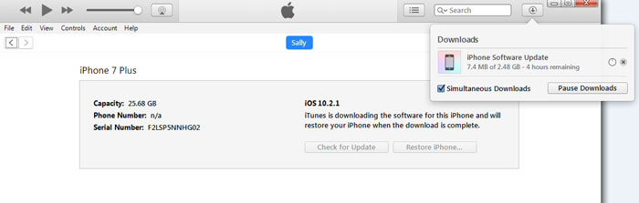 apple iphone reset instructions